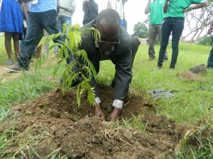 Acting Deputy Dean of Student Affairs, Mr. Museteka planting a tree