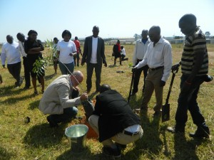 Tree planting exercise at Heroes Stadium, Lusaka. Photo credit/UNIC Lusaka